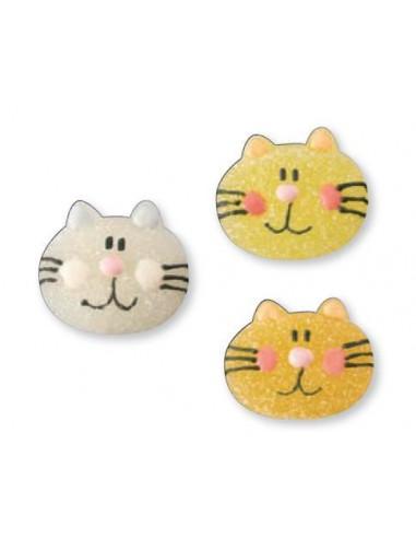 Gatti in gelatina
