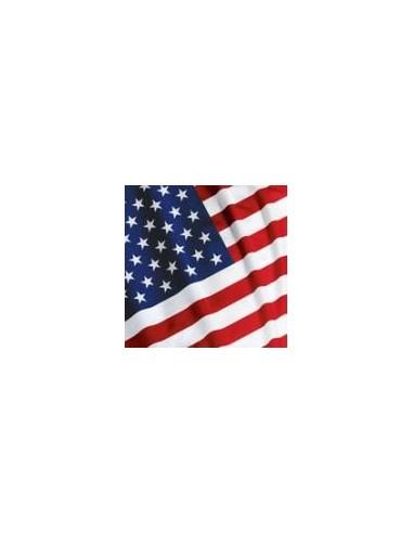 Tovaglia in plastica Bandiera Americana